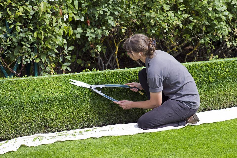 Faire appel à un Jardinier pour entretenir votre jardin.