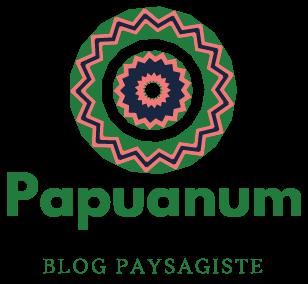 Papuanum